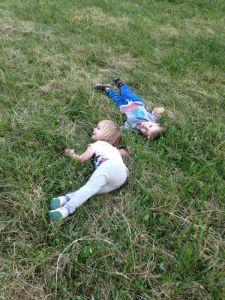 t n t in grass